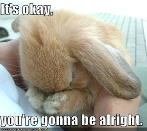 There, there little bunny...